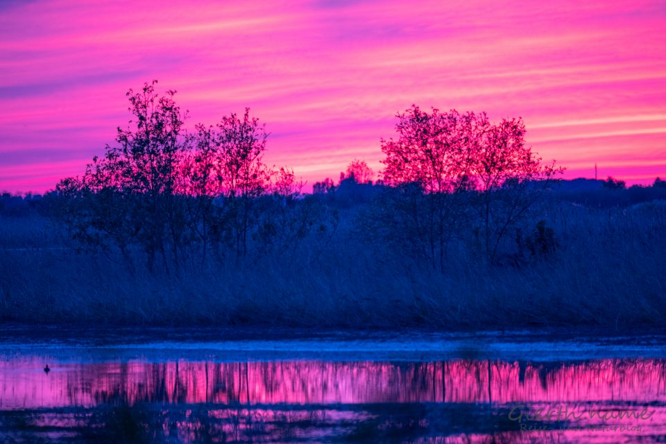 Heimat der Flamingos - die Sonnenuntergänge sind Farbspektakel