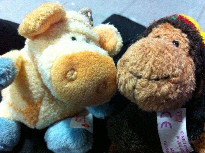 Schäfchen und Schweinchen sind zurück