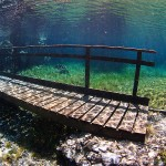 Brücke im Grünen See