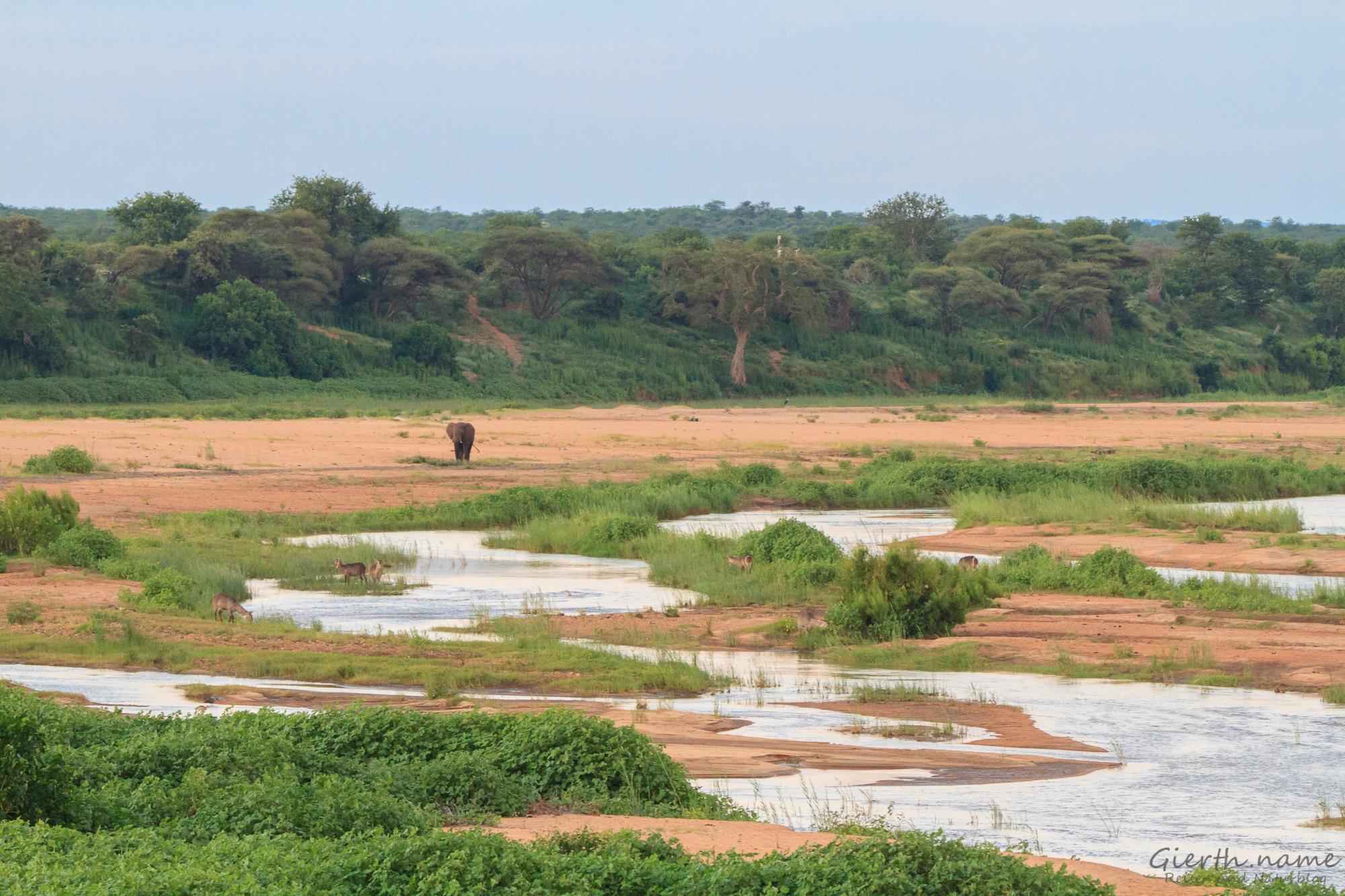 Blick über den Letaba-River