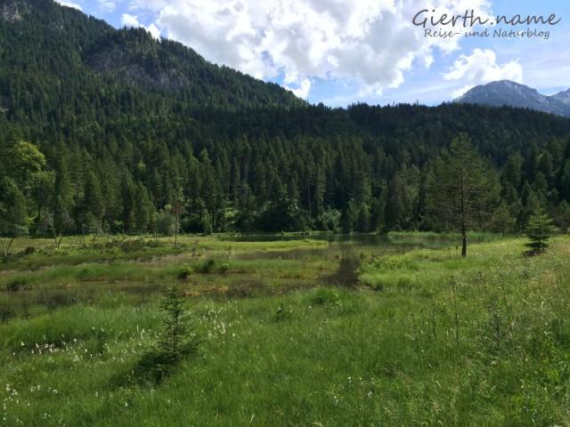 Bekanntes Habitat in Tirol