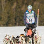 Schlittenhunderennen in Inzell, Musher mit der Nr. 147