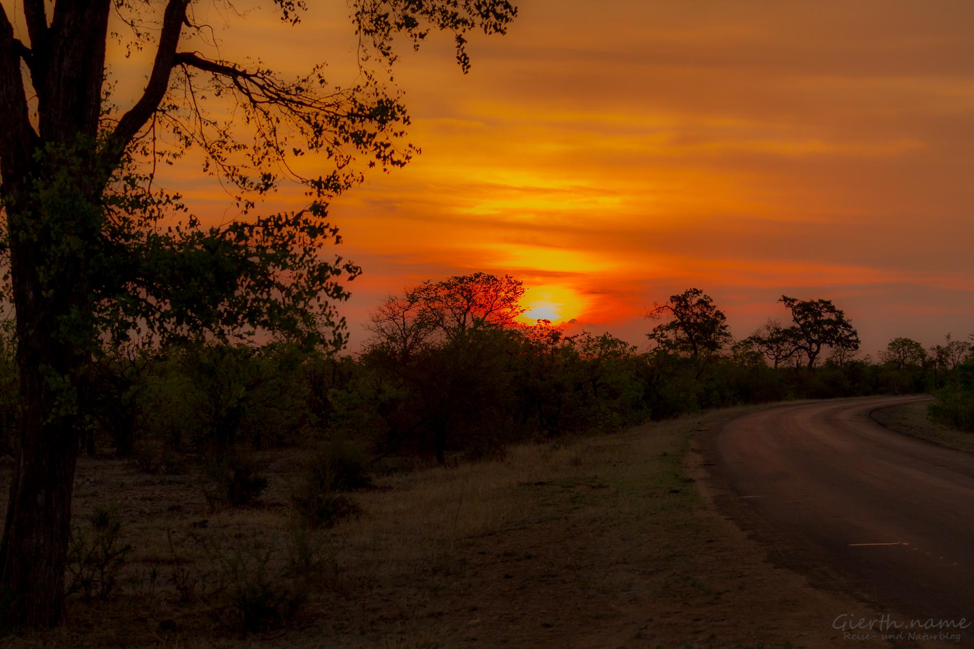 Sonnenuntergang im Krüger Park