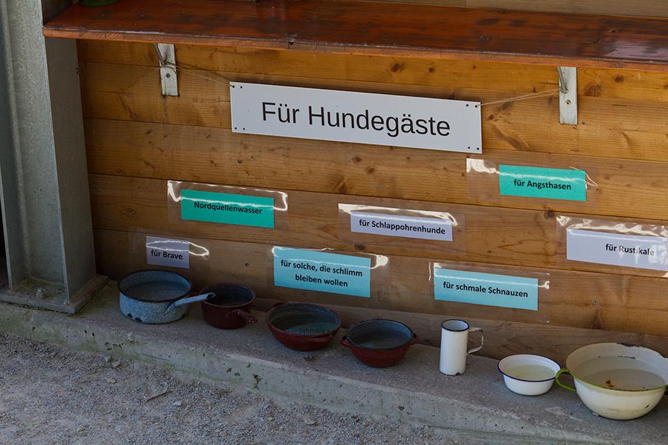 Großzügig Hundetränke Bilder - Hauptinnenideen - nanodays.info
