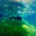 Alex im Grünen See