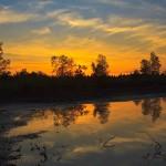 Sonnenuntergang Schönramer Filze