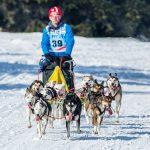 Markus Wojcik, einer von zwei Mushern mit mehr als 8 Hunden